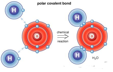 chemical bonding a level notes pdf