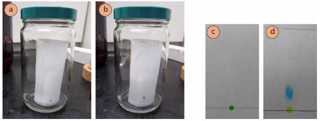 Chromatography and Qualitative Analysis | A-Level Chemistry
